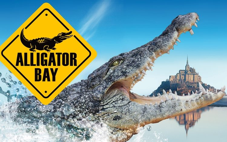 –Alligator-bay-4—-Beauvoir