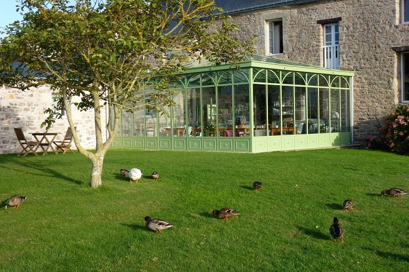 CANARDS-VERRIERE-MANOIR-SAINT-MICHEL-OT-FREHEL-2