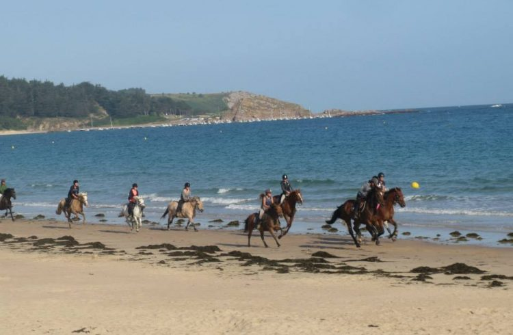 cpg-hautes-grees—plage-chevaux
